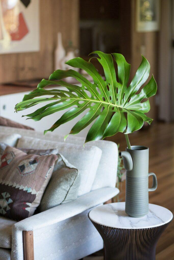 foilage and plants in vase