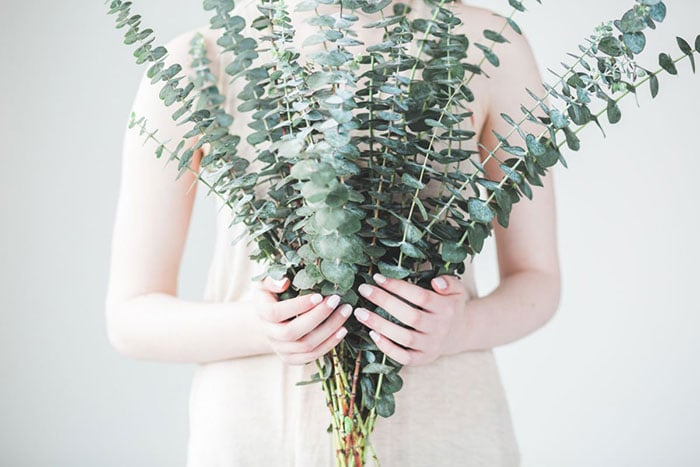 woman holding a bundle of eucalyptus