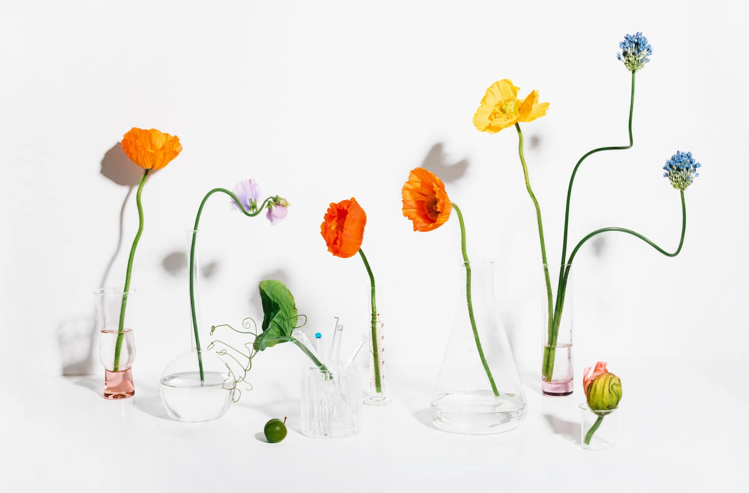 beakers and flowers sakara supplements